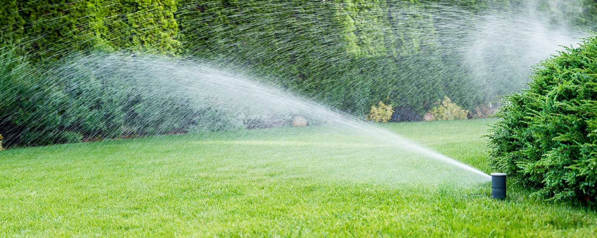 tci-irrigation